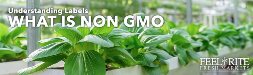 What Non GMO Means : Understanding Labels